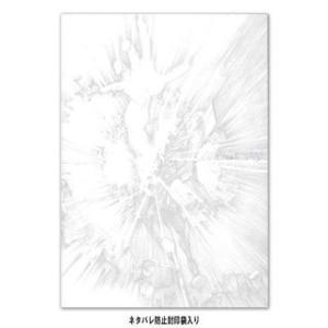 『シンエヴァ パンフレット/新劇場版シリーズ B2ポスター』