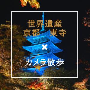 京都 世界遺産「東寺」夜間拝観へ 紅葉とライトアップを撮るためカメラ片手に巡ってみた