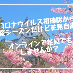 新型コロナウイルス初確認から1年 桜シーズンだけど花見自粛 オンラインで花見でもしませんか?