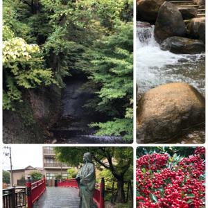 有馬の湯と神戸に咲く一輪の薔薇