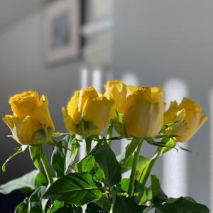 美しさを花から取り込む