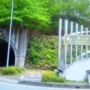 新緑の浦山ダムへ行きました。