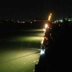 愛知県 ヒイカ釣り 釣れる場所はココです!