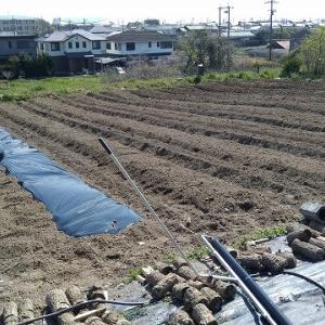 夏作の準備に忙しいです。【2020年4月15日農業日誌】