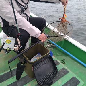 タコを釣りに新舞子沖に行きました【2020年5月31日釣行記】