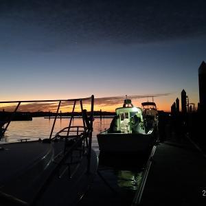 渥美半島「風車前」での青物釣り【2020年11月29日 釣行記】