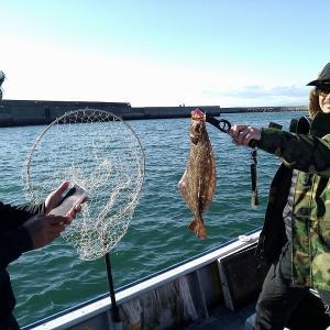 内海新港 フリーカー ヒラメ釣り【2020年12月1日釣行記】