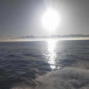 敦賀 タイラバ釣行、毎度毎度釣れることは無い【2021年5月6日釣行記】