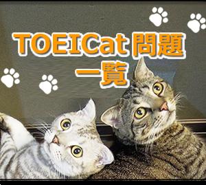 TOEICat問題 その41 (猫ミステリー小説・第21章より)