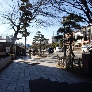 THE TONKATSU CLUB