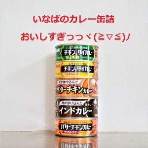 買い物頻度を減らすコスパ最強品!いなばのカレー缶詰が超おすすめ