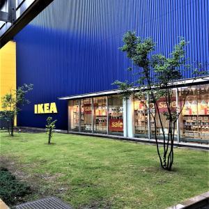 【IKEA】2020年夏の新商品気になったもの&セール情報&リピ買いのもの