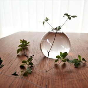 【楽天で買える作家もの】枝モノを最後まで楽しめる♪ガラスの美しい花器