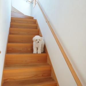 【注文住宅】2階リビングの失敗点!引っ越し時に見落としがちな注意事項!