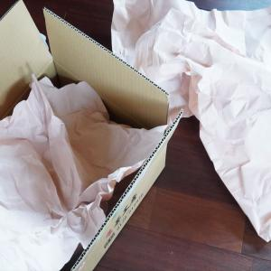 すぐに捨てないで!ごみ袋に代用、宅急便の緩衝材の紙は再利用でエコ~♪