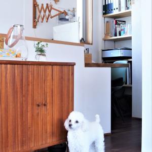 北欧ヴィンテージ家具の探し方♪わが家の家具の購入先と収納をご紹介<質問回答>