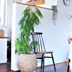 蚤の市で破格値だったヴィンテージ家具!北欧インテリアを格上げする椅子!