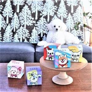 【映えお菓子】ワンコ好きに大人気のかわいい豆菓子&密着しすぎな仲良し愛犬達~♡