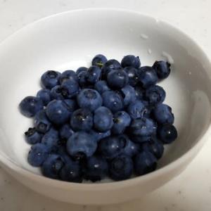 ブルーベリー、ついに念願の初収穫