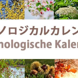 四季ではなく、十の季節がある ドイツのフェノロジカル・カレンダー