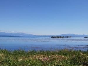 琵琶湖に移動
