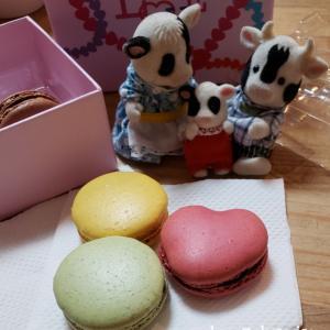 名古屋高島屋チョコの祭典でラデュレが買える幸せ✩.*˚
