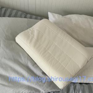やっと買った枕〜ドイツの枕は使い辛かった!(2020年に買ってよかった物から)