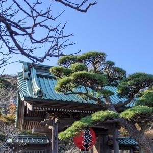 鎌倉長谷寺。