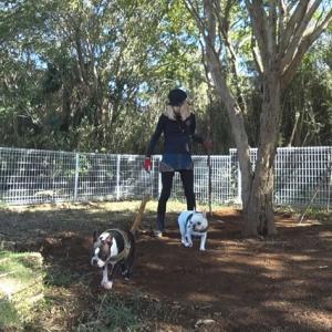 【DIY動画】ワンコと一緒に自宅ドッグラン整地【庭作り】