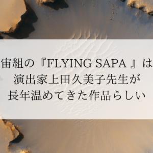 宙組の『FLYING SAPA 』は演出家上田久美子先生が長年温めてきた作品らしい