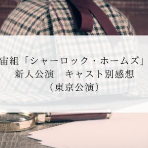 宙組「シャーロック・ホームズ」新人公演 キャスト別感想(東京)