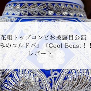 新花組トップコンビに大人の色気『哀しみのコルドバ』『Cool Beast!!』レポート