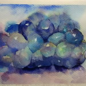 悪戦苦闘の葡萄