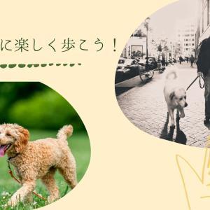 お散歩を楽しもう!〜犬と私196〜