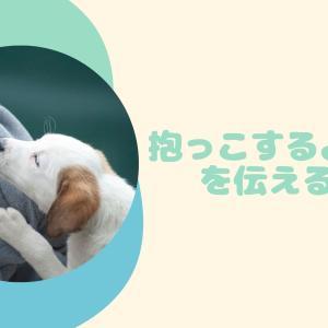 抱っこの約束〜犬と私198〜