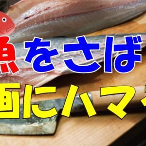43歳、魚をさばく動画にハマる!