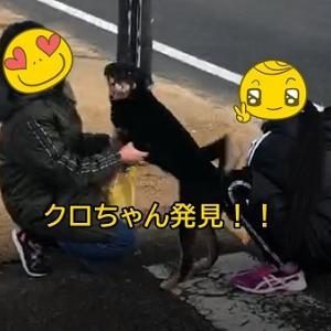 新居浜で行方不明だったクロちゃん発見!!