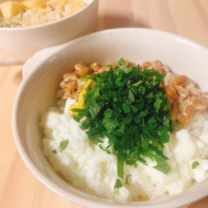 【ズボラ飯】プロテイン丼とりんごサラダ