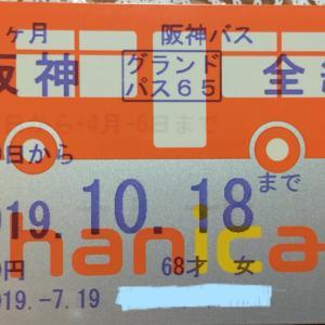 バスの定期更新600円値上げやったでちゅ~!