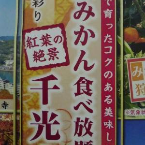 愛媛&広島♪