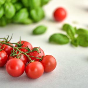 【腸内環境】食生活を見直して心と体にやさしい暮らしを