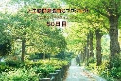 人工股関節長持ちプロジェクト(エアロバイクダイエット)50日目