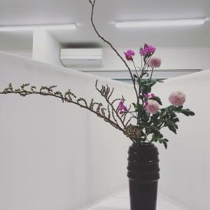 お花を玄関に飾る♡