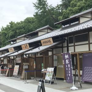 名古屋城の城下町、金シャチ横丁の遊び方&注目グルメガイドをご紹介