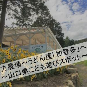 船方農場でのんびりして、「加登多」でうどん食べた~山口県こども遊びスポット~