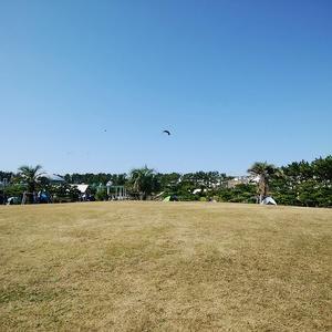 海浜公園で日なたぼっこ