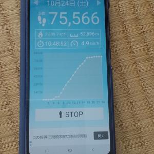 消費カロリー2899.7Kcal、歩行距離52.896Km…