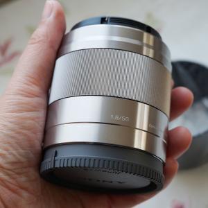 初めての交換レンズは単焦点でした――私が「Sony E 50mm F1.8」を買った理由