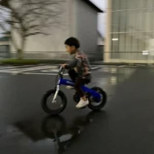 自転車に乗れた!得意げな孫