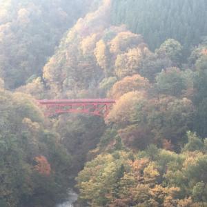 紅葉の名所、高山村の『松川渓谷』&『雷滝』へ行ってきました!!